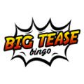 Big Tease Bingo site